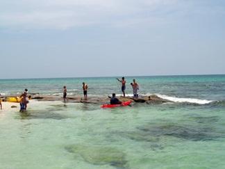 Experience florida snorkeling in sarasota area waters for Tides 4 fishing sarasota