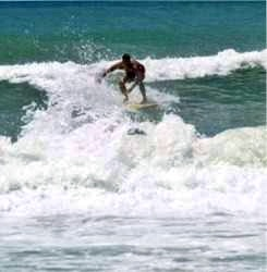 Florida Surfing at Cortez Beach on Southwest Anna Maria Island Florida