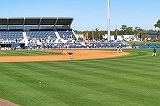Tampa Rays Spring Training Stadium