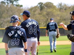 Tampa Bay Rays at Spring Training Work Outs