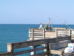 Fishing in the Gulf of Mexic offf the Venice fishing pier