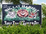 big cat sanctuary sarasota florida