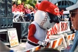 Cincinnati Reds Rally in downtown Sarasota Florida