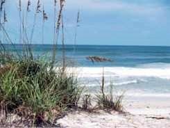 Secluded Coquina Beach Anna Maria Island