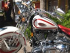 Annual Sarasota Motorcycle Festival Called Thunder By The Bay