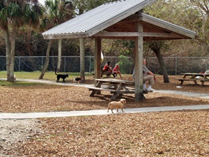 Paws Park at Brohard Beach Venice Florida
