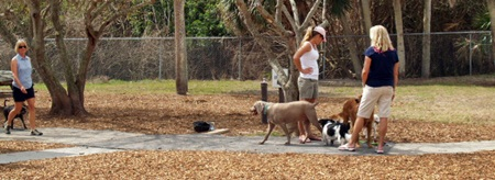 Paws Park at Venice Florida's Brohard Beach