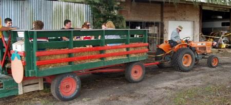 A Pumpkin Fest Hayride