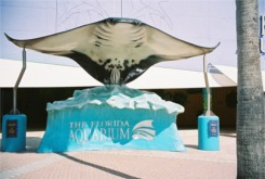 Sting Ray Statue at the Florida Aquarium