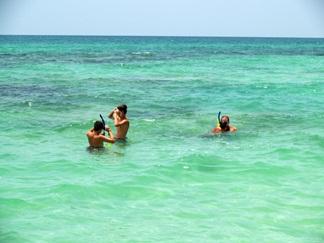 florida snorkeling on siesta key