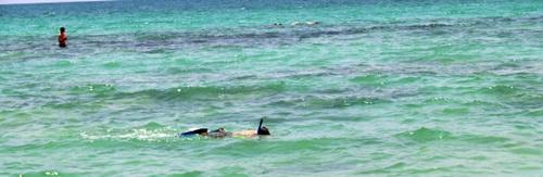 snorkeling on siesta keys crescent beach at point of rocks