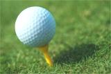 Sarasota Golf Bobby Jones Complex