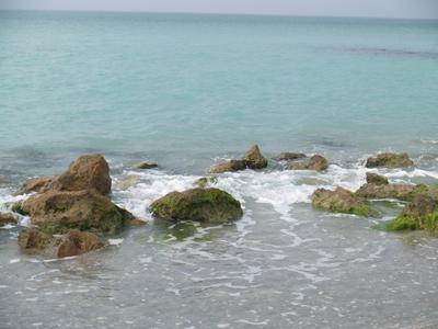 Caspersen Beach, Venice, FL