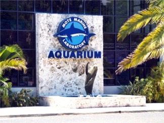 Mote Aquarium Sarasota Florida