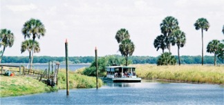 The airboat named Gator gal coming in to dock at Myakka Park