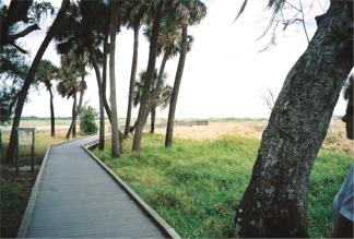 The Myakka Birdwalk Boardwalk
