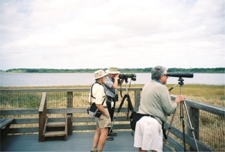 Birdwatchers at Myakka Park's Birdwalk