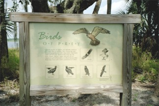 A birdwatching guide at the Birdwalk of Myakka River State Park