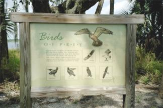 A birdwatching guide at the Birdwalk of Myakka River State Park
