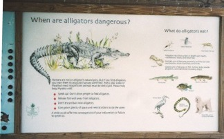 Alligator information sign at Myakka State Park