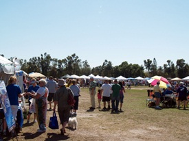 Sarasota Pets Fest at the fairgrounds