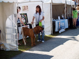 The Pet Fest at Sarasota Fairgrounds