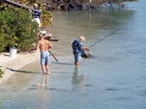 Sarasota fishing on the intra coastal waterway