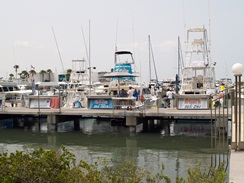 Sarasota-Florida Fishing Charters