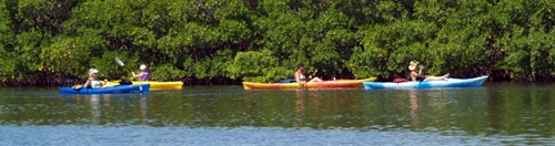 Sarasota kayak tour at South Lido Beach park