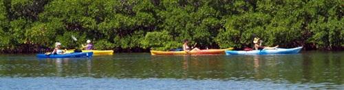 Sarasota kayak tour at South Lido Beach park
