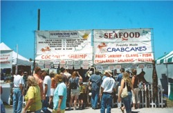 Sharks tooth fest seafood vendor Venice Florida