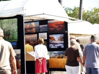 Annual Venice Florida Art Fest