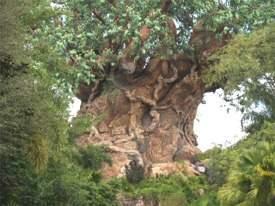The Tree of Life at Disneys Animal Kingdom Orlando