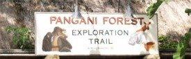 Pangani Forest sign at Disneys Animal Kingdom Orlando