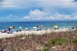 Shoreline at Manasota Beach
