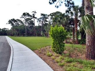 Blackburn Point Park walking path