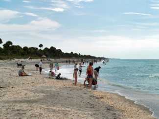 Shoreline of Caspersen Beach Venice Florida