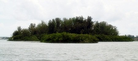 Edwards Island  Sarasota Florid