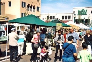 The Sarasota Florida Farmers Market