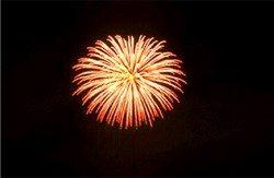 Fireworks over Venice, Florida