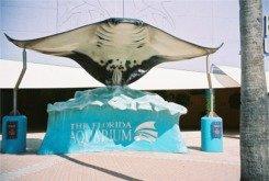 Sting Ray Statue at the Florida Aquarium
