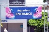 Entrance at Mote Aquarium