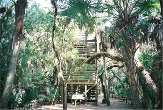 The Myakka Canopy Walkway Tower