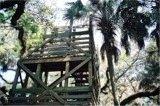 The Myakka Canopy Walkway Tower