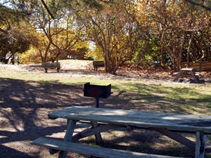 Picnic table and grill at North Jetty Park Nokomis Florida