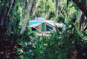 Camping at OScapr Scherer State Park near sarasota Florida