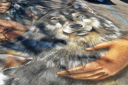Creativity on display at the Sarasota Chalk Fest