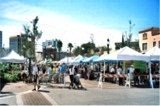 The Downtown Sarasota Farmers Market