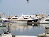 Sarasota Fishing Charters at downtown bayfront