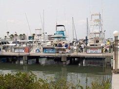 Sarasota-Florida Fishing Charters